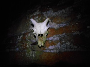 Skull in the dark! above the bothy door